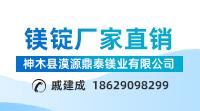 鼎泰镁业200-111