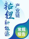 中國鈷鋰新能源產業鏈常規報告