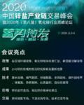2020年中国锌盐高峰论坛