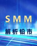 SMM解析铅市