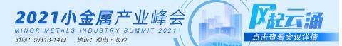 2021小金属峰会480-65