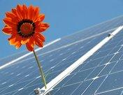 晶澳太阳能为墨西哥太阳能项目提供模块