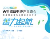 王者再现|泉州微柏实力亮相!展台赞助2020年再生铅蓄电池产业峰会!