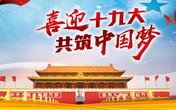"""【SMM评论】中国进入""""十九大""""时间 金属静待政策指引"""