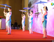 《SMM第十三届铜铝峰会》视频纪录片