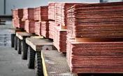 India Brass, Copper Scrap prices stay flat; Copper Futures down by 2.42 percent