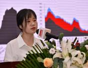 【氧化锌峰会】贸易战、环保等影响下2018年氧化锌市场供需两弱