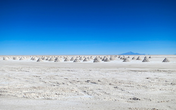 Cooler demand from NEVs, higher supplies to limit upside in lithium carbonate prices