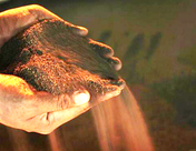 【SMM分析】3月未锻轧铜及铜材进口同比增13% 暂未受疫情影响