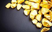 特朗普将宣布国家紧急状态!冲突加剧美国经济深受其害 黄金走势会涨多高?