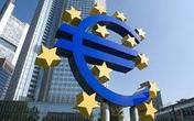 欧元区10月核心调和CPI同比初值 1.1% 符合预期