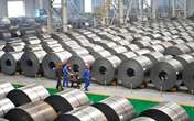 Daily crude steel output at CISA key mills rose in mid November