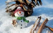 圣诞购物季将至 美国零售股却遭金融危机以来最大抛售