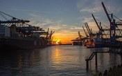 Estimated Slight Drop for Australia Shipment during Early November