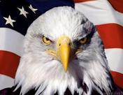 """特朗普称联储拒绝降息像""""顽童"""" 下月会议决策料转鸽"""