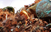 Copper scrap prices lower amid thin trading