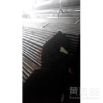 热镀锌护栏管厂家-镀锌护栏管厂