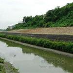 边坡加固生态格网河道防护生态格网河道修复生态格网