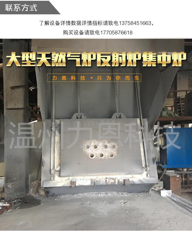 温州力恩科技大型熔炼炉专业熔锌物料铝物料