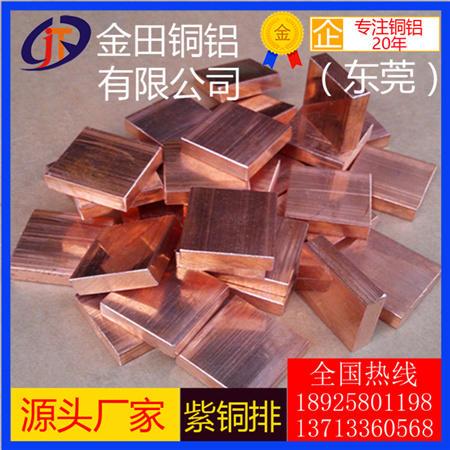 环保T3紫铜排紫铜条 大规格紫铜棒价格 T2紫铜扁条高纯度紫铜排